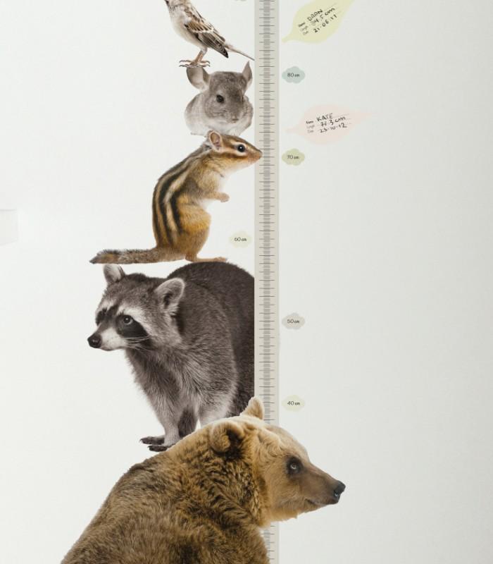Messlatten wandsticker b r und waldtiere 150 x 40 cm von - Wandsticker name ...